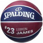 Ballon de Basket-Ball SPALDING NBA Player Ball 2016 LeBron James de la marque Spalding TOP 3 image 1 produit